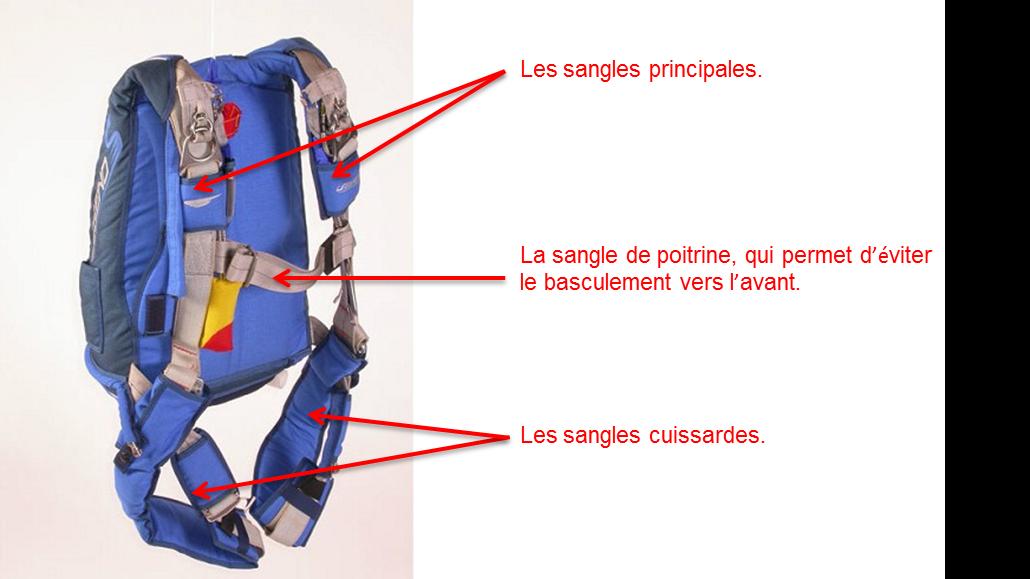 harnais-parachute
